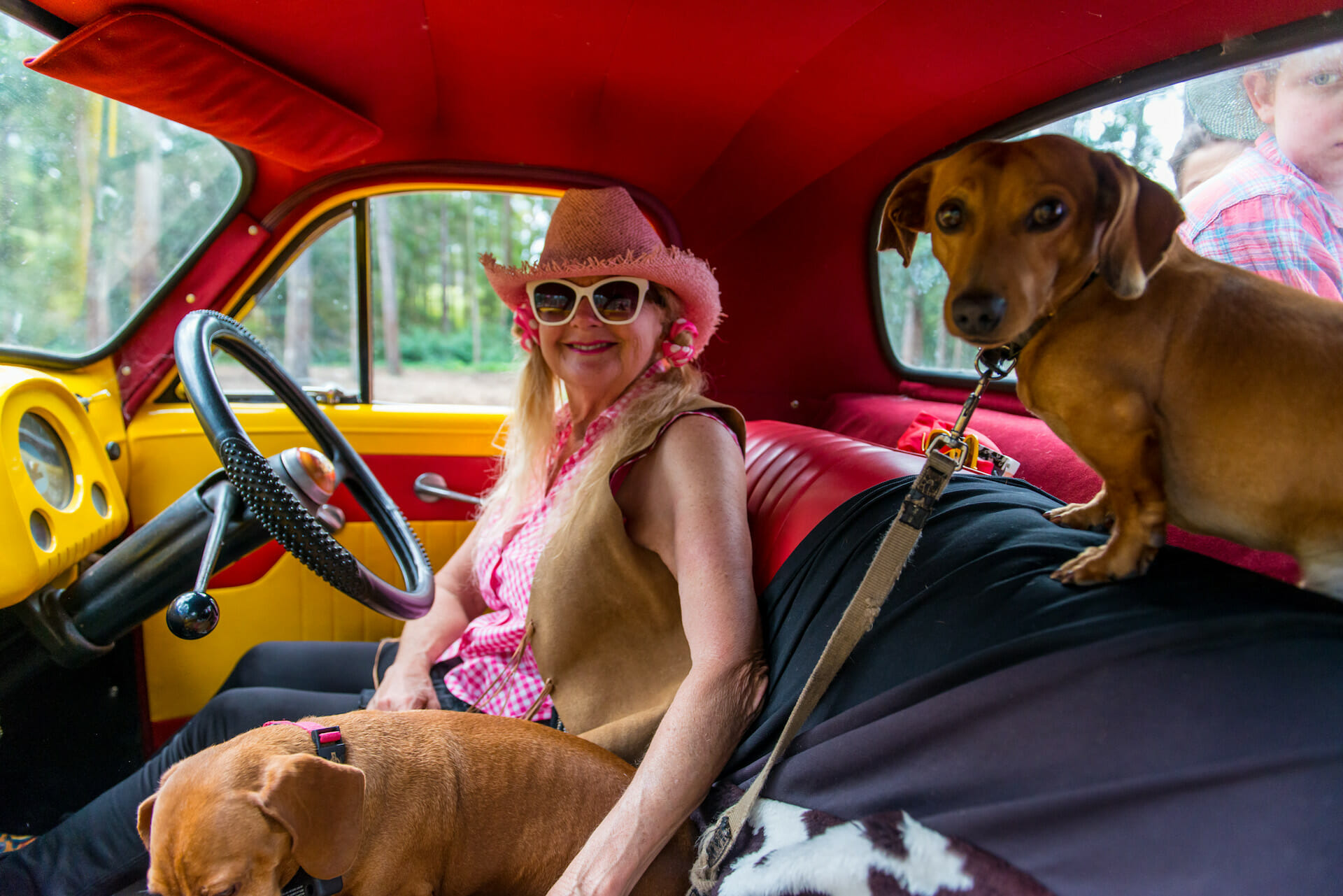 Atalanta in FJ Holden UTE with Puppies 1920 x 1280