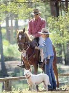 History Rider and Dog