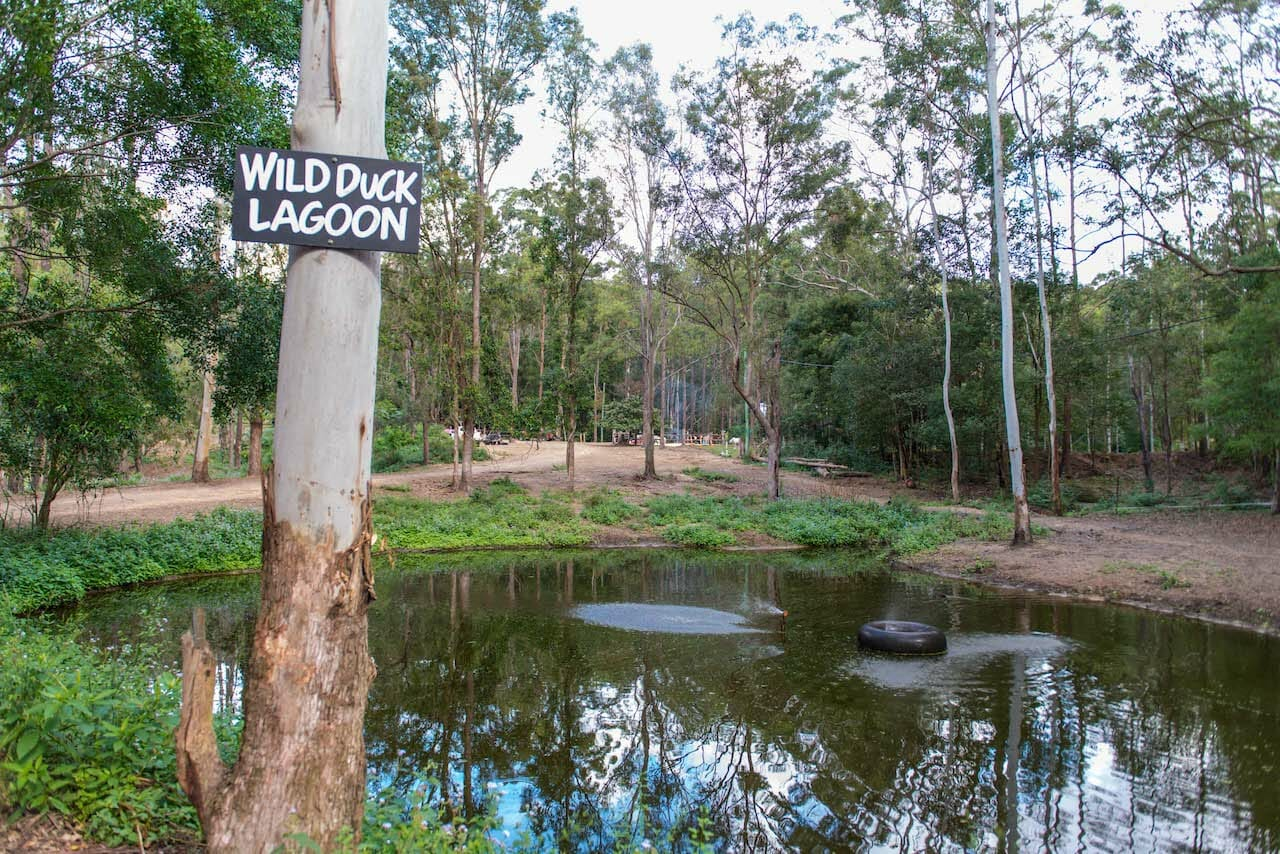 Wild Duck Lagoon 1920 x 1280