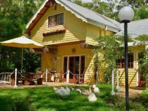 Frangipani House Geese