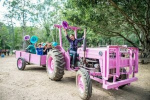 Happy Children on Pink Tractor and Trailer 1920 x 1280