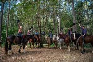 Horse Ridding to Pooh Corner Raising Hats 1920 x 1280