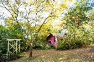 Jacaranda Cottage and Garden 1920 x 1280